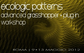 Ecologic Patterns 9-13 Maggi